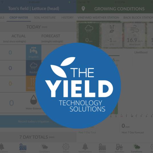 The Yield - Sensing+
